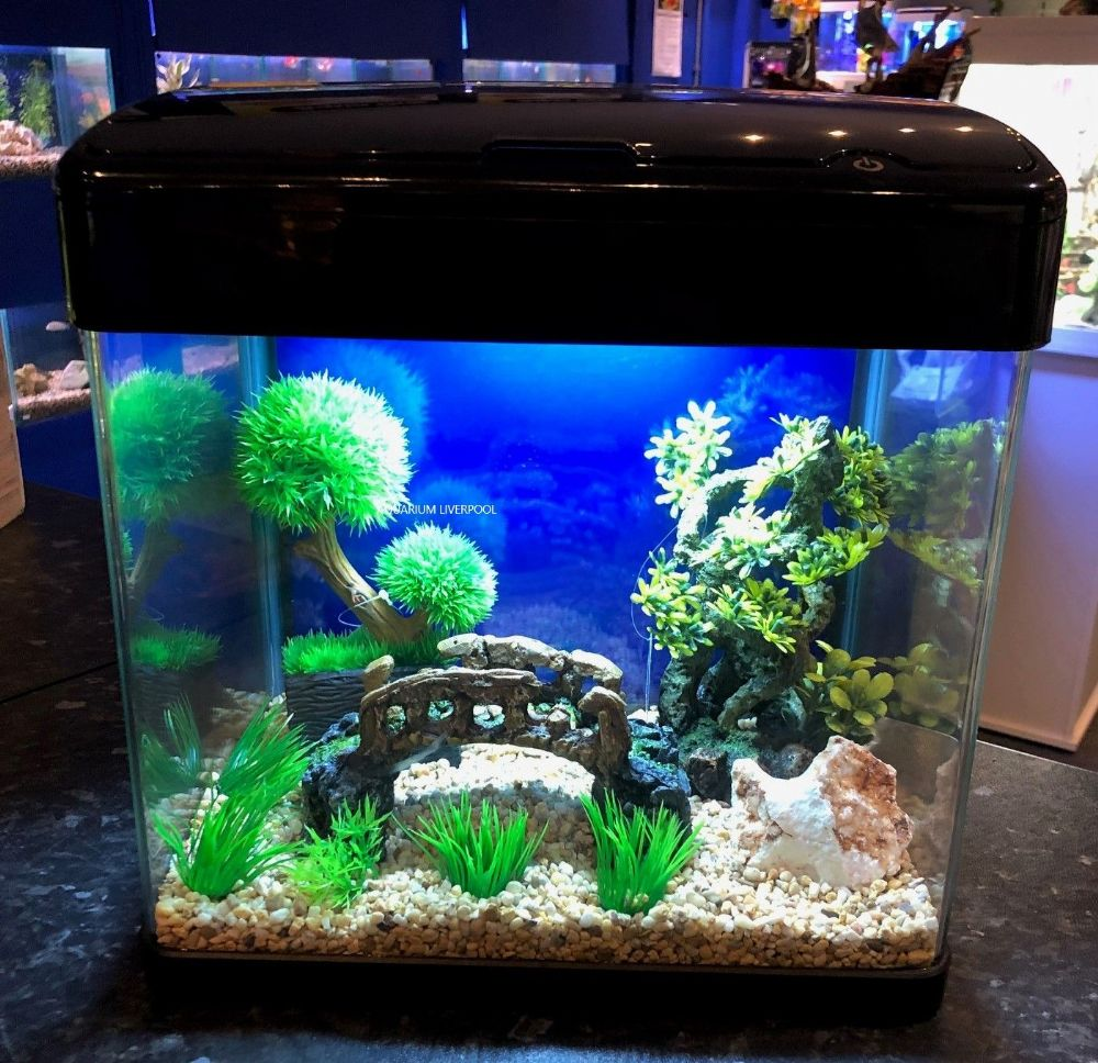 H7 BLACK  Glass Aquarium with Touch LED Lights & Trickle Filter